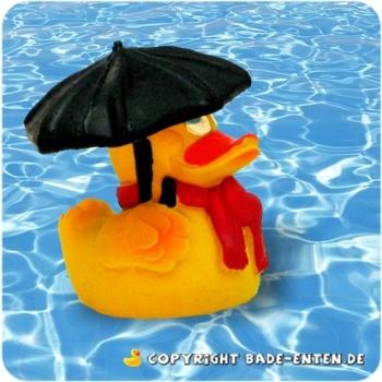 Schlechtwetter Ente